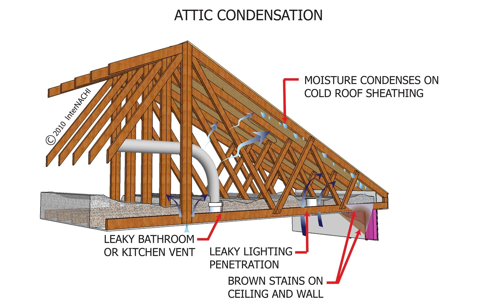 Things We Love: Fixing Roof Leaks & Attic Condensation