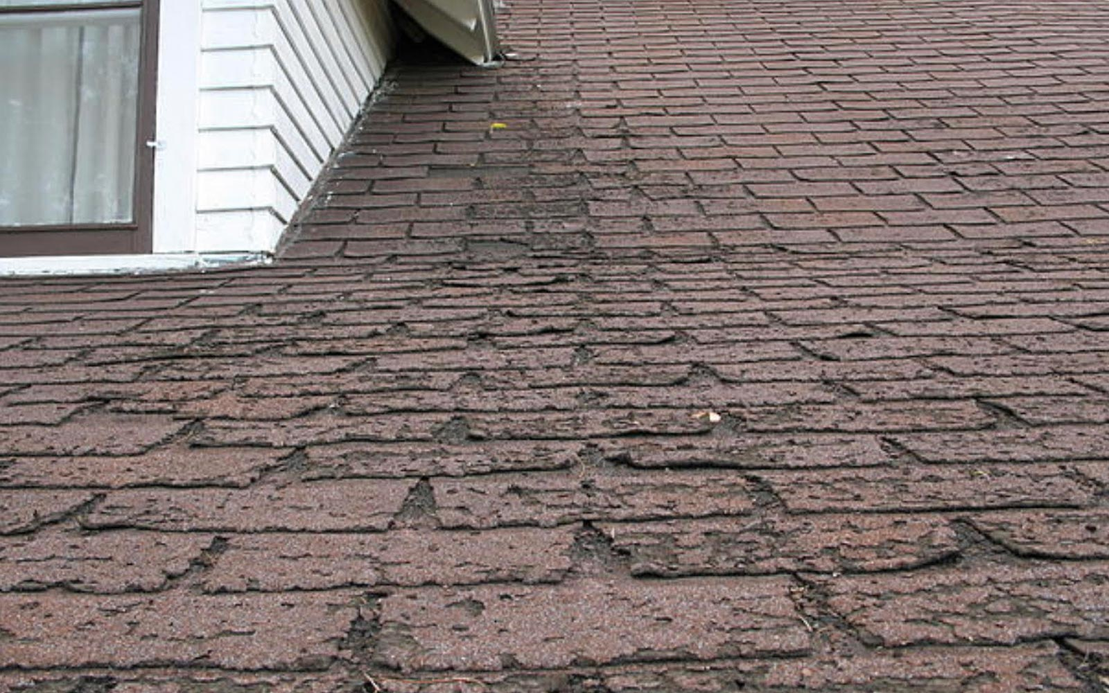 6 Signs Your Roof Needs Replacing
